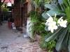 ayutthaya-guesthouse