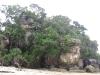 beach-of-telok-paku
