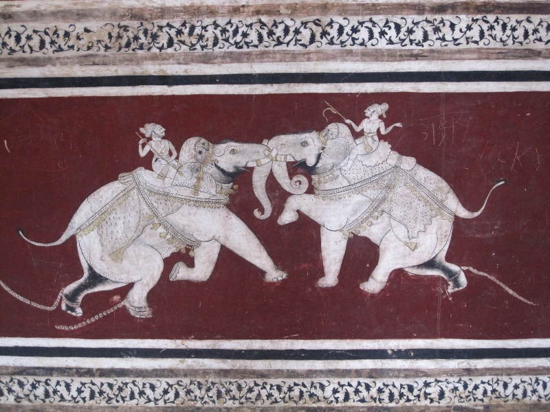 two-elephants-fighting