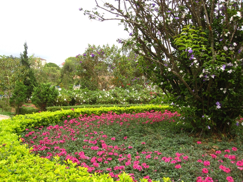 a-nice-garden