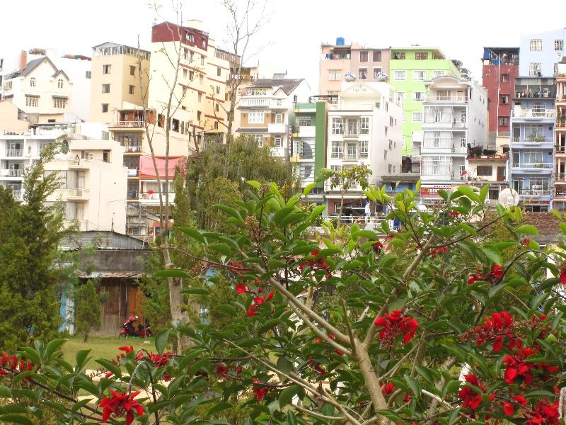 dalat-town