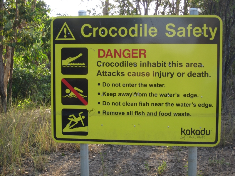 crocodile-safty-australia