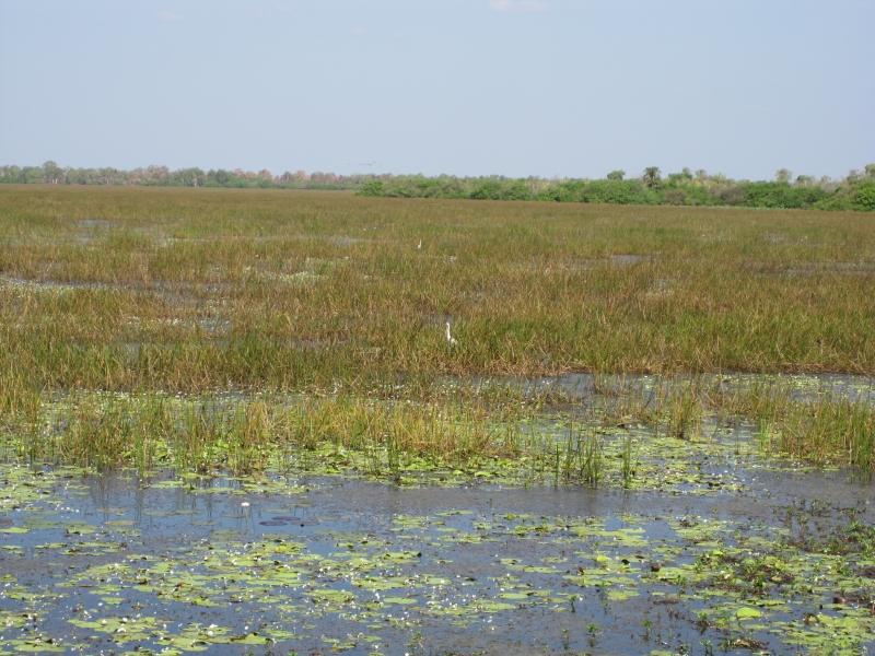 marmukala-billabong-kakadu-nationalpark