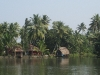 boats-houses-palms-and-water-wonderful