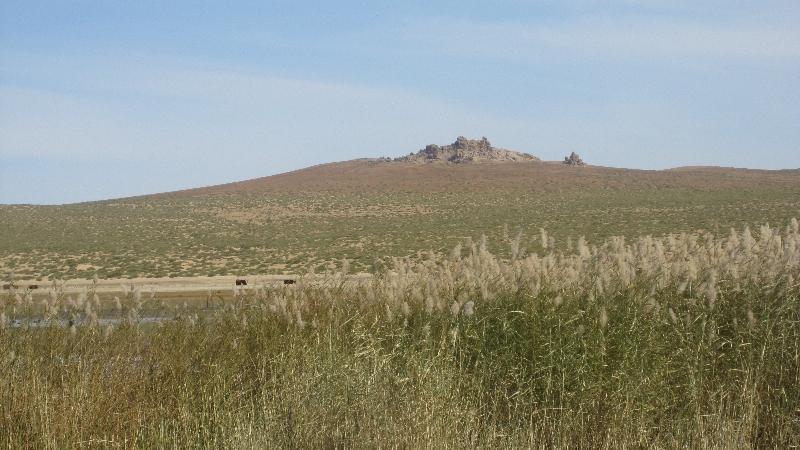 mongolian-scenery