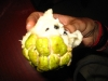 exotic-fruit-custard-apple