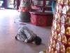 praying-in-quan-am-pagoda