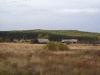 sibirian-landscape