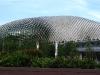singapores-dorian