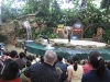 splash-safari-show-singapore-zoo