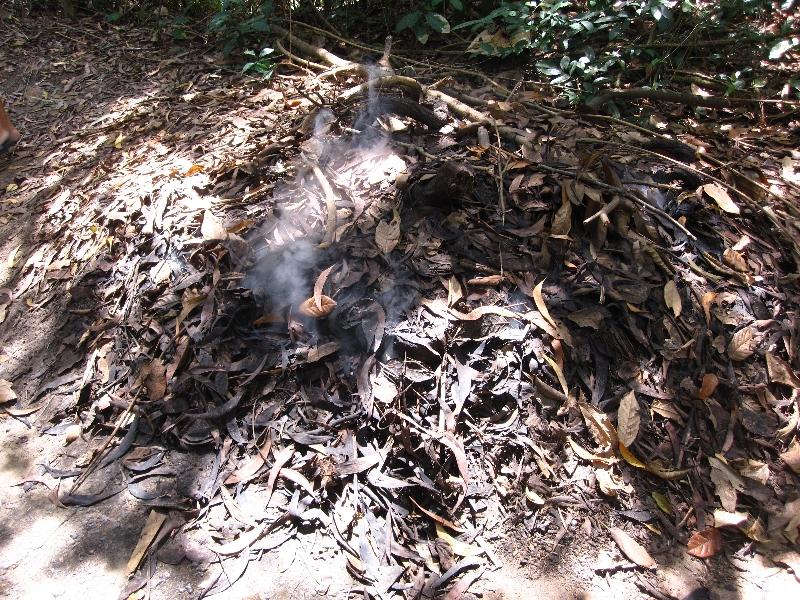 Les Viet-Cong camouflent la fumée de la cuisine en brume matinale
