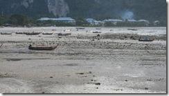 Loh Dalum Bay in Thailand - der Strand ist sehr hässlich