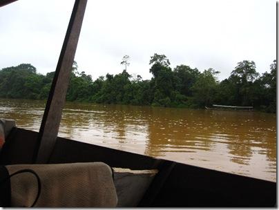 Sungai tembeling Dschungelfluss