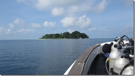 diving at Sipandan island