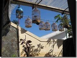 Vogelkäefige indonesischer Künstlerstadt