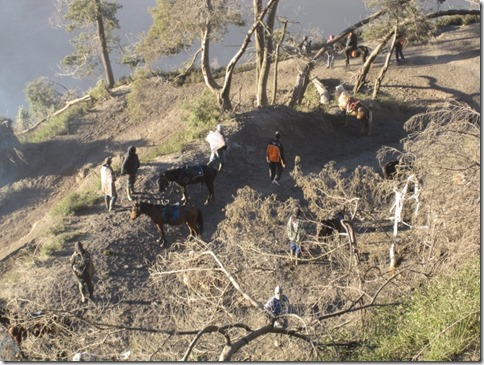 Pferdeführer, um zum Aussichtspunkt zu gelangen