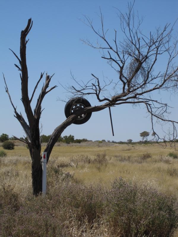 Outback - pneus dans l'arbre