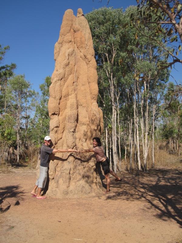 Termitenhügel Australiens